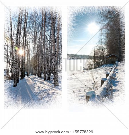 Beautiful Christmas card. Winter landscape. Frosty sunny day. White background space for your text
