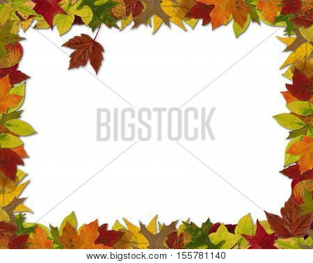 Fall leaf-themed frame 8 by 10 ratio