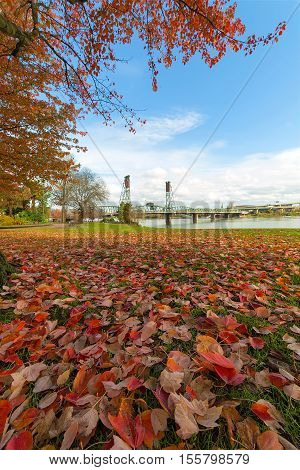 Portland Oregon city downtown waterfront park with maple tree foliage by Hawthorne Bridge in fall season