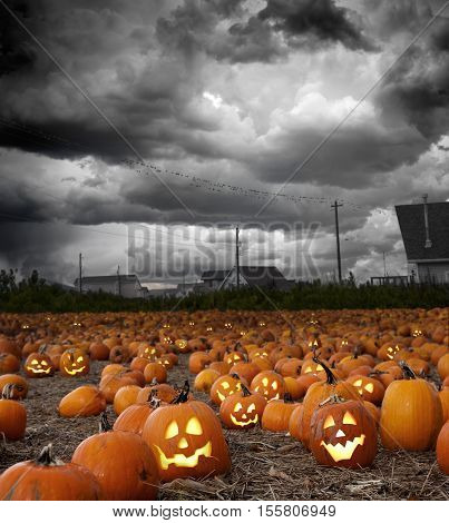 Halloween pumpkin field with grinning faces at stormy dusk