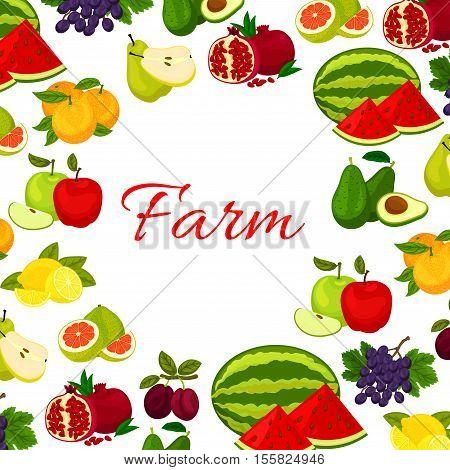 Fruits poster. Fresh farm watermelon, orange, avocado, pomegranate, plum, grape, lemon, pomelo fruit icons in round frame for kitchen, store decoration design