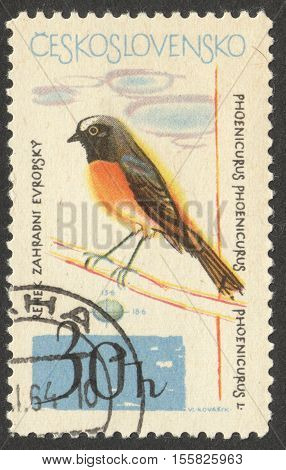 MOSCOW RUSSIA - CIRCA OCTOBER 2016: a post stamp printed in CZECHOSLOVAKIA shows a Phoenicurus phoenicurus bird the series
