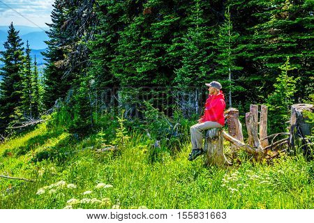 Senior woman sitting on a tree stump enjoying the view of the Shuswap Highlands from Tod Mountain