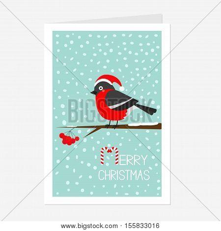 Bullfinch winter red feather bird sitting on rowan rowanberry sorb berry tree branch. Santa hat. Cute cartoon funny character. Greeting card. Flat design. Blue snow background Vector illustration