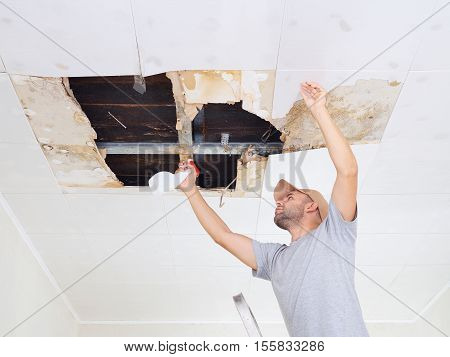Man Cleaning Mold On Ceiling.ceiling Panels Damaged Huge Hole In Roof From Rainwater Leakage.water D