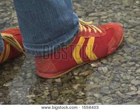 Red Sneakers In Water
