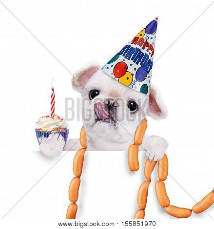 Birthday dog with sausages . Over white banner.