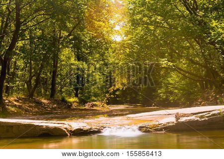 Beautiful forest at Prokopi village in Euboea in Greece with Kireas river running through.