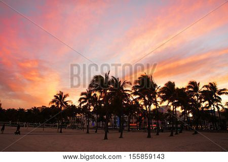 MIAMI BEACH, UNITED STATES - FEBRUARY 12: People walk at Lummus park view near South Beach on 12th of February, 2016 in Miami Beach.