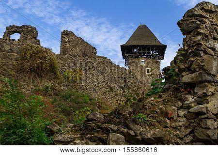 Kamyanitsa Ukraine - October 27 2016: Ruins of the Nevitsky castle near the village Kamyanitsa. The castle was built in the 13th century.