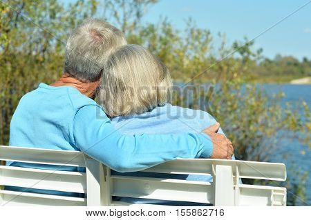 Backside of senior couple sitting on bench in summer park