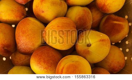 fresh peaches with selective focus on some peach