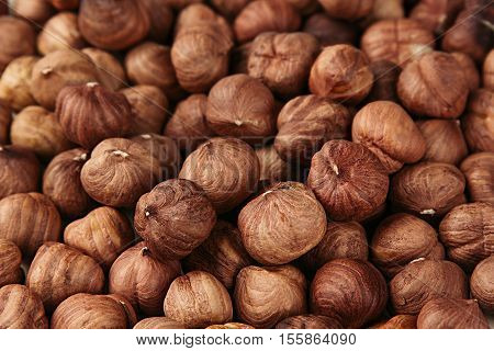 Hazelnut background. Pile of selected hazel close-up. For vegetarians.