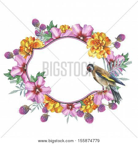 Wildflower hibiscus wreath in a watercolor style isolated. Full name of the plant: marigold, hibiscus. Aquarelle wild flower for background, texture, wrapper pattern, frame or border.