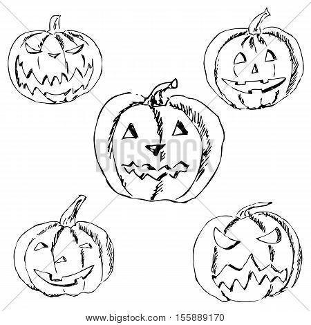 Pumpkin for Halloween. Pencil drawing by hand. Vector image