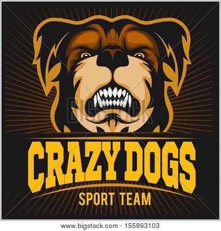 Modern professional logo for sport team. Crazy Dog mascot. Bulldog, vector symbol on a dark background.