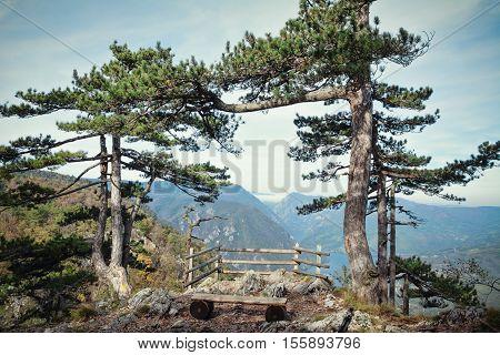Beautiful National park Tara mountain on the autumn, Serbia