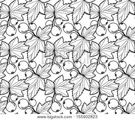 Currants doodle style seamless pattern. Currants line seamless pattern. Currants coloring anti-stress. Currants Berry texture background. Vector illustration