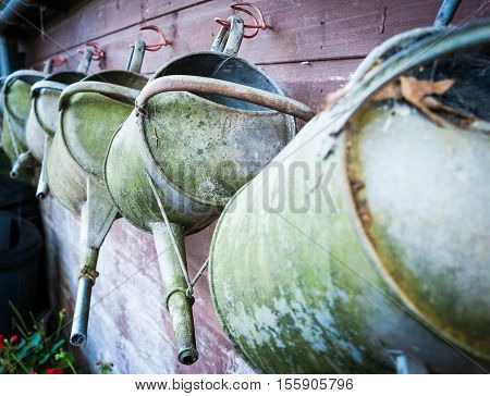 A row of well used one and a half gallon galvanised watering cans hang on a shed wall ready. Crook Hall, Durham UK