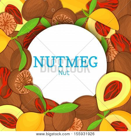 Round white frame on nutmeg background. Vector card illustration. Circle spice nuts frame, nutmeg nut fruit in the shell, whole, shelled, leaves appetizing looking for packaging design of healthy food