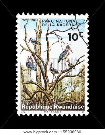 RWANDA - CIRCA 1965 : Cancelled postage stamp printed by Rwanda, that shows Marabous at Kagera National Park.
