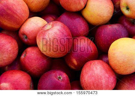 Bushel of Ripe Red Gala Apples Background