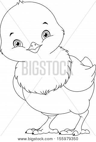 Cute chick on white background, coloring page