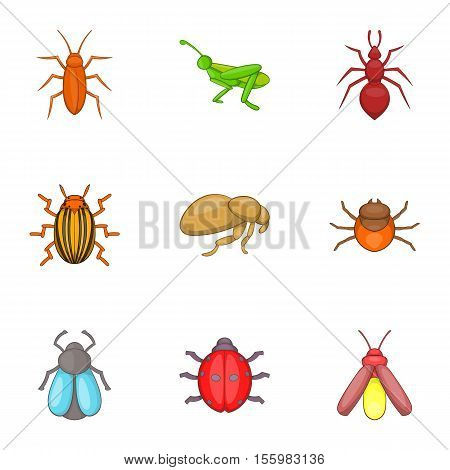 Bugs icons set. Cartoon illustration of 9 bugs vector icons for web