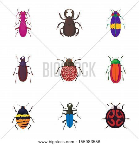 Crawling beetles icons set. Cartoon illustration of 9 crawling beetles vector icons for web