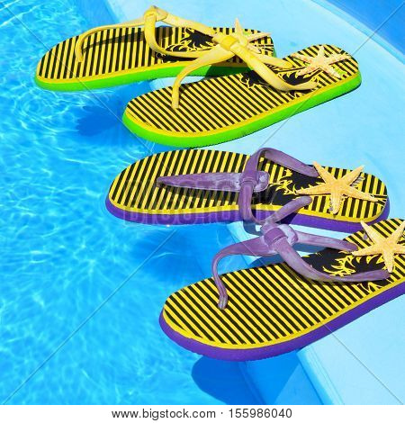 Flip-flops and starfish on the swimming pool.