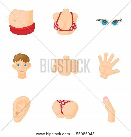 Body icons set. Cartoon illustration of 9 body vector icons for web