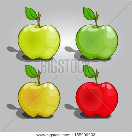 Apple Collection vector a set of fruit without a background summer healthy food fresh vitamins in cartoon style