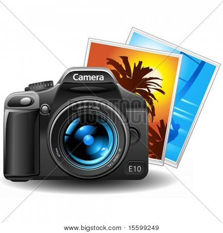 vector photo camera with pictures
