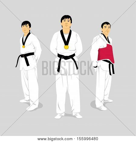 karate vector illustration of isolated from the background