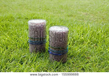Two healthy drinks blueberry smoothies with coconut milk served on grass