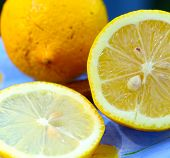 Juicy lemons Lemon slices. Fresh Lemon. Fresh citrus fruit background. poster