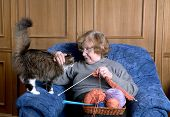 The old woman sits in an armchair and stroke a cat poster