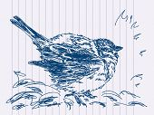 Hand drawn bird. Visit my portfolio for big collection of doodles poster