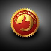 vector best quality label in golden color poster