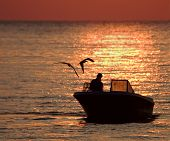 fisherman and friends checking the traps at dawn. ** Note: Slight blurriness, best at smaller sizes poster