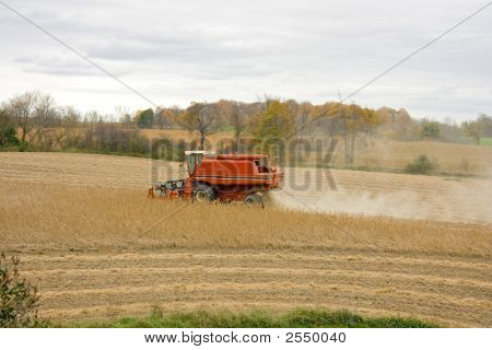 Midwest Combine Harvesting Soy Beans