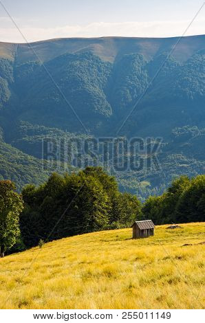 Hut On The Grassy Hill Near The Beech Forest. Beautiful Scenery In Mountains. Warm And Sunny Afterno