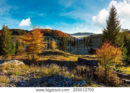 Beautiful Landscape In Mountains. Wonderful Autumn Sunrise With Fog In The Distant Valley. Mixed For
