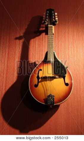 Mandolin Hanging On Red Wall