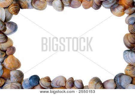 Shell Image Frame