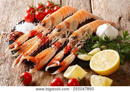 Food Background Fresh Raw Langoustine, Scampi With Vegetables, Herbs And Spices Close-up. Horizontal