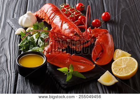 Whole Red Lobster With Fresh Parsley, Basil, Slices Of Lemon, Garlic, Tomatoes And Butter Closeup. H