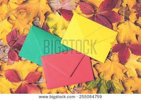 Colored Envelopes On Autumn Leaves Background. Autumn Holidays Concept. Letter In Autumn Time. Autum