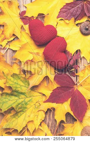Love In Autumn. Two Hearts On Leaves Background. Autumn Mood. Seasonal Sales. Autumn Holiday. Fallen