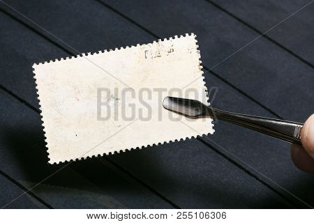 Philately Concept - Tongs Keeps Postage Stamp With Unused Back Side